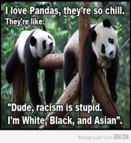 PandasAI