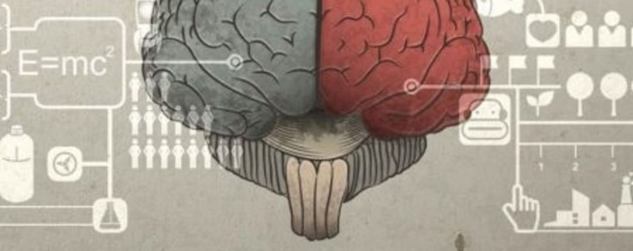 Brain Matters: How to help anyone learn anything using neuroscience cover