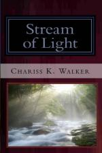 Stream of Light (The Vision Chronicles, Book 6) (cover)