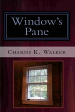 Window's Pane (The Vision Chronicles, Book 3) (cover)