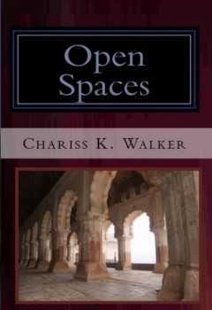 Open Spaces (The Vision Chronicles, Book 5) (cover)