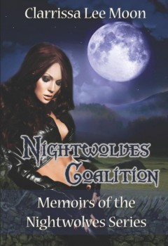 Nightwolves Coalition (cover)
