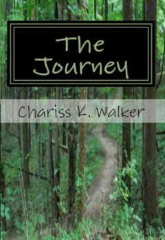 The Journey (cover)