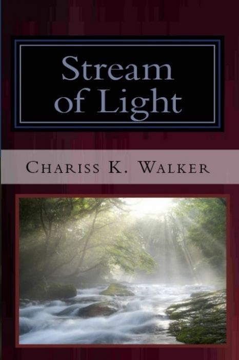 Stream of Light (The Vision Chronicles, Book 6)