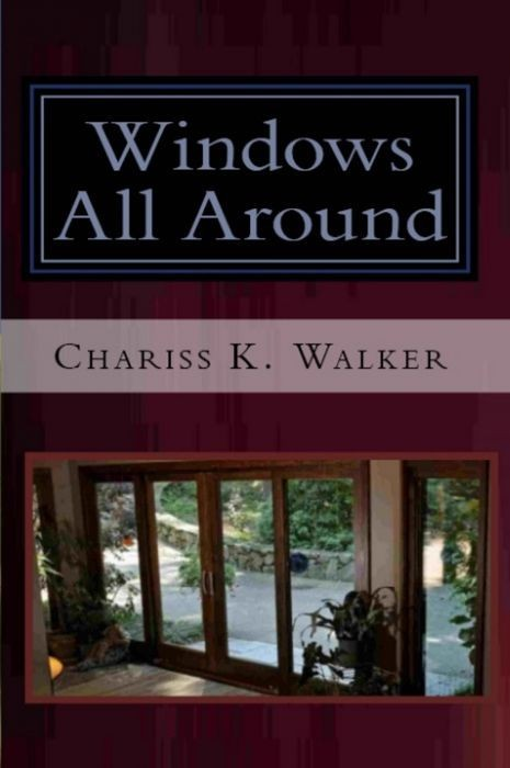 Windows All Around (The Vision Chronicles, Book 4)