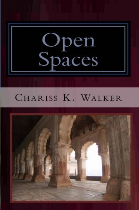 Open Spaces (The Vision Chronicles, Book 5)