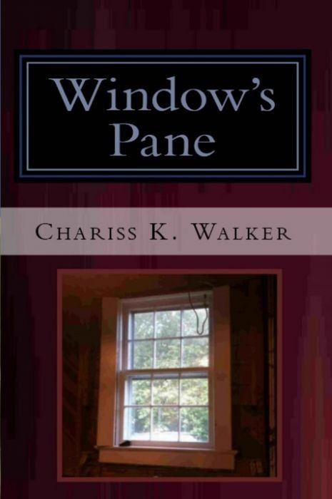 Window's Pane (The Vision Chronicles, Book 3)